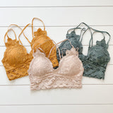 Lace Bralette | 11 colors