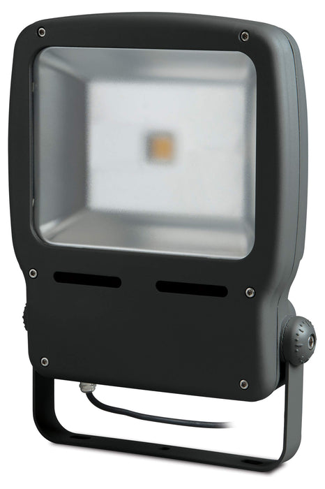 BG LCFL25W Guardian LED Floodlight - BG - sparks-warehouse