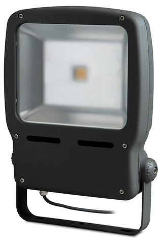 BG LCFL25W Guardian LED Floodlight