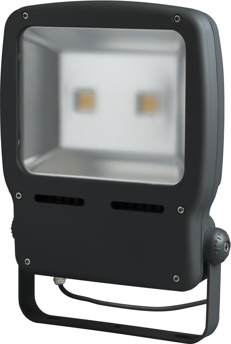 BG LCFL120W Guardian LED Floodlight - BG - sparks-warehouse