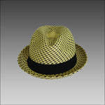 Tumi Striped Trilby Panama Hat