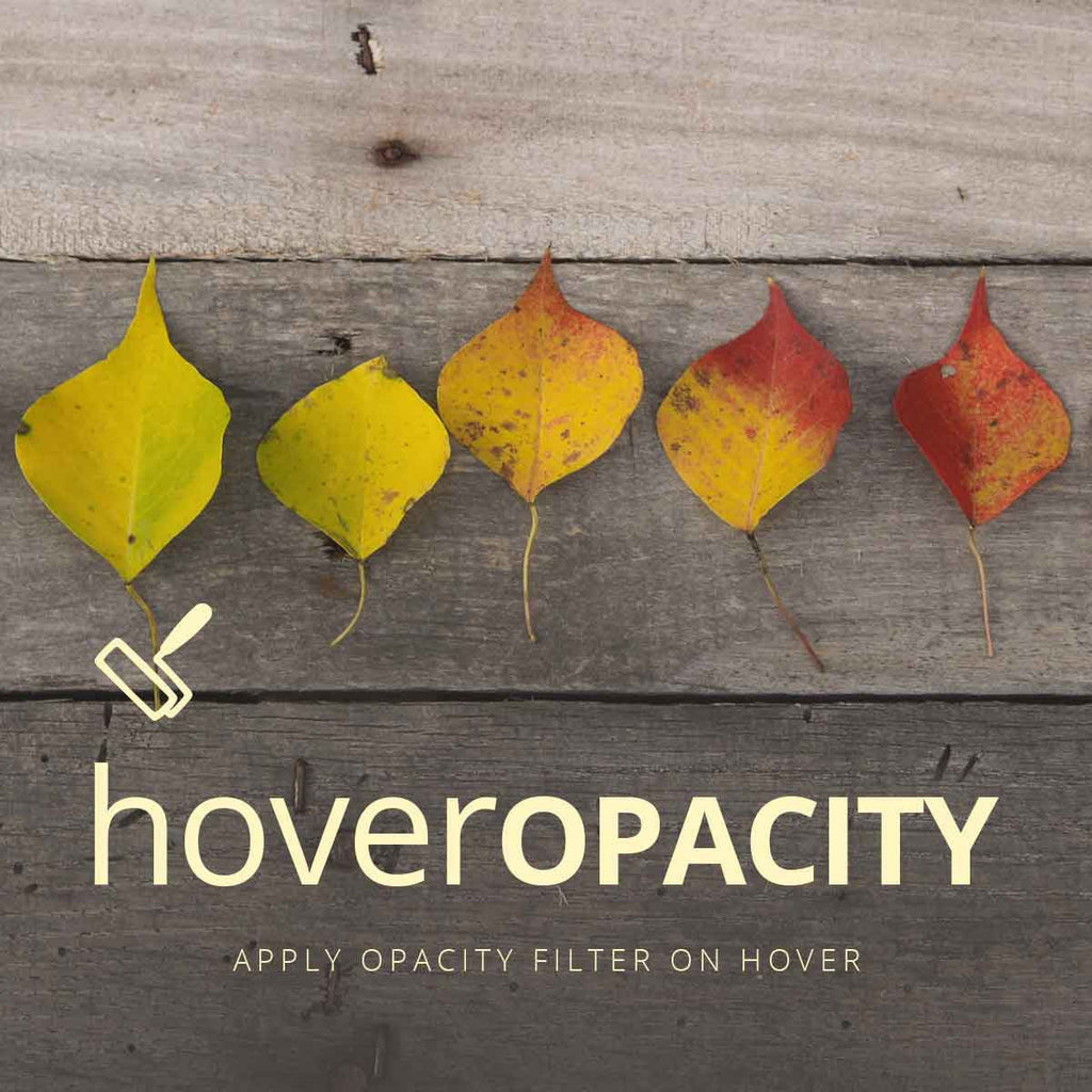 Hover Opacity