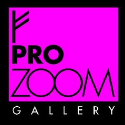 Pro Zoom Gallery