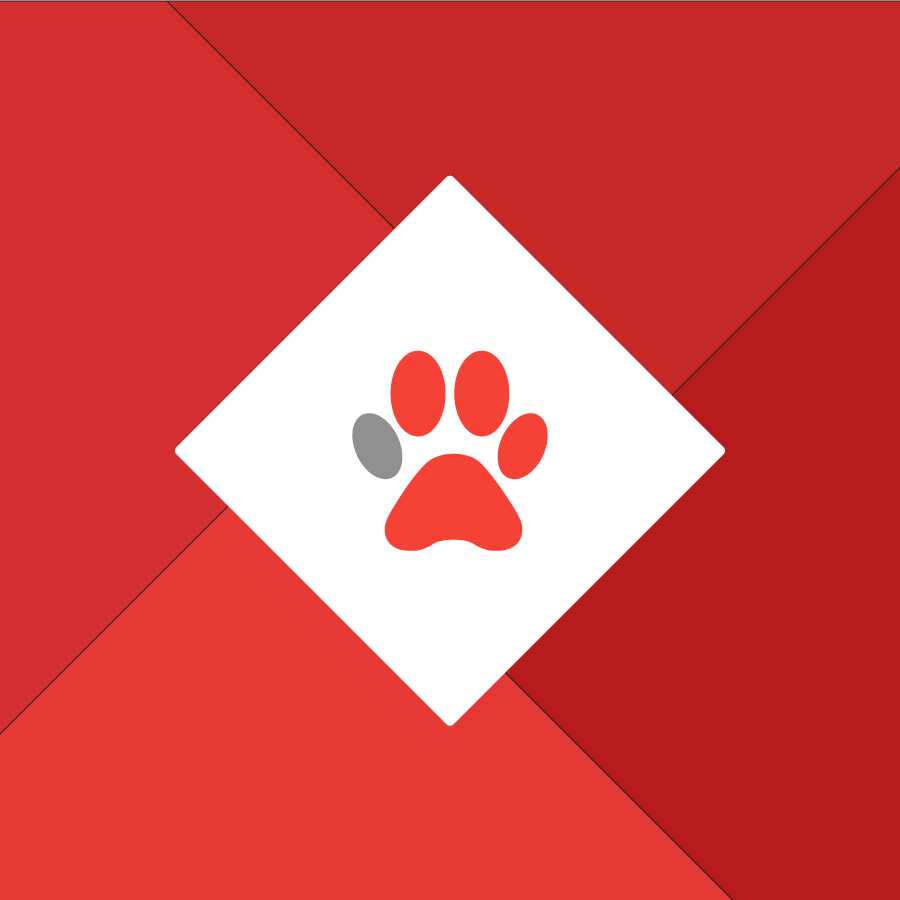 Local SEO: Animal Shelter