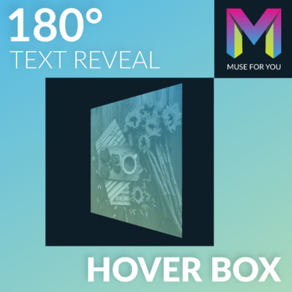180 Degree Text Reveal Hover Box