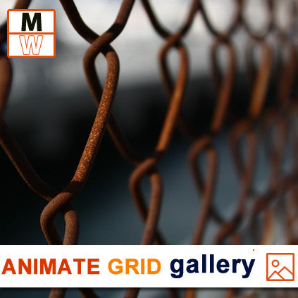 Animate Grid Gallery