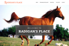Radigan's Place, United States