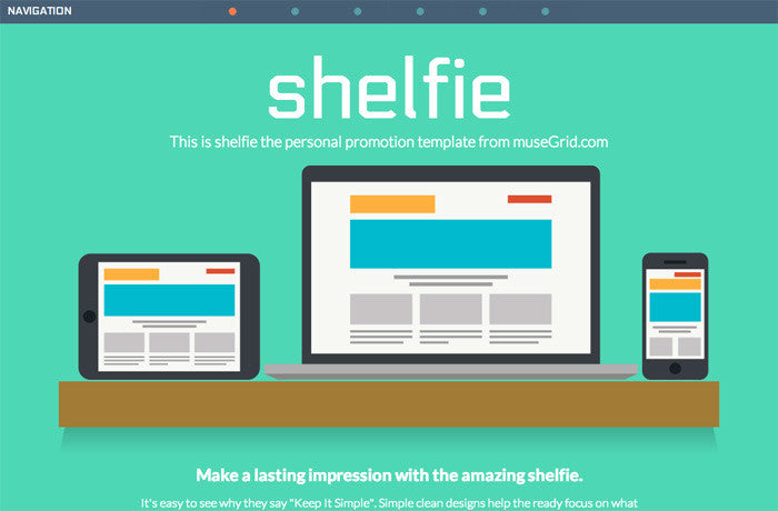 Shelfie Theme, United States