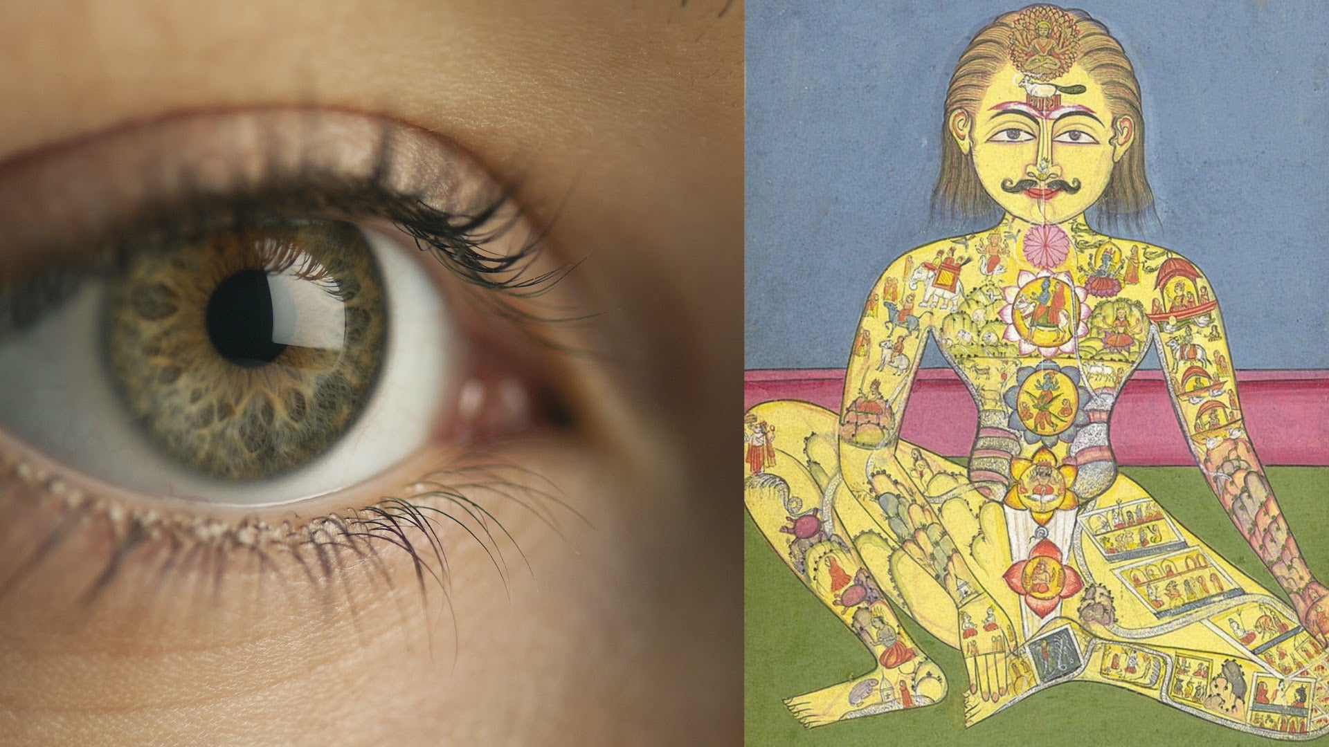 Disease Stages Overview - Ayurveda & Iridology