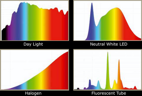 P6 Light Power Spectrum Chart