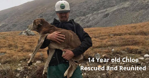 14 Year old Chloe Rescued from Mt. Bross in Colorado