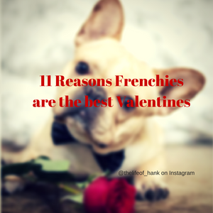 11 Reasons Frenchie's make the best Valentine