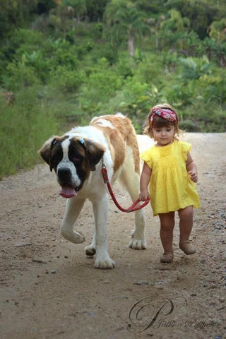 Dogs give children responsibility and a job