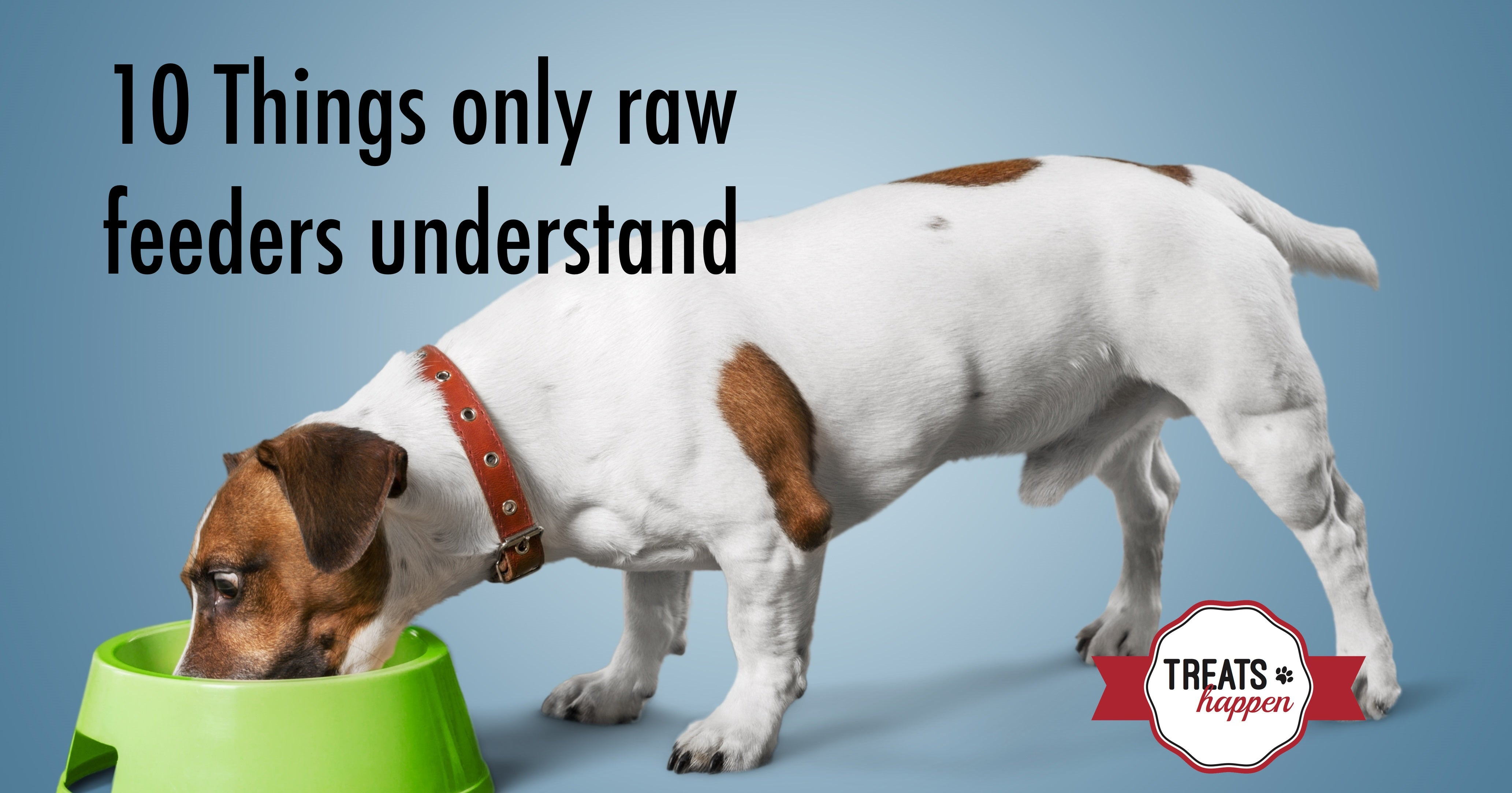 10 Things only raw feeders understand from Treats Happen