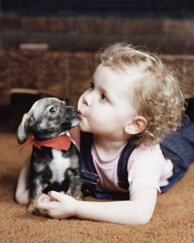 Dogs can teach children a lot of things. One of many reasons dogs are great for children