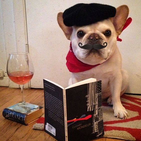 French French Bulldog with beret and moustache