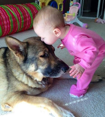 Dogs listen to your stories and can make a great reading partner for children