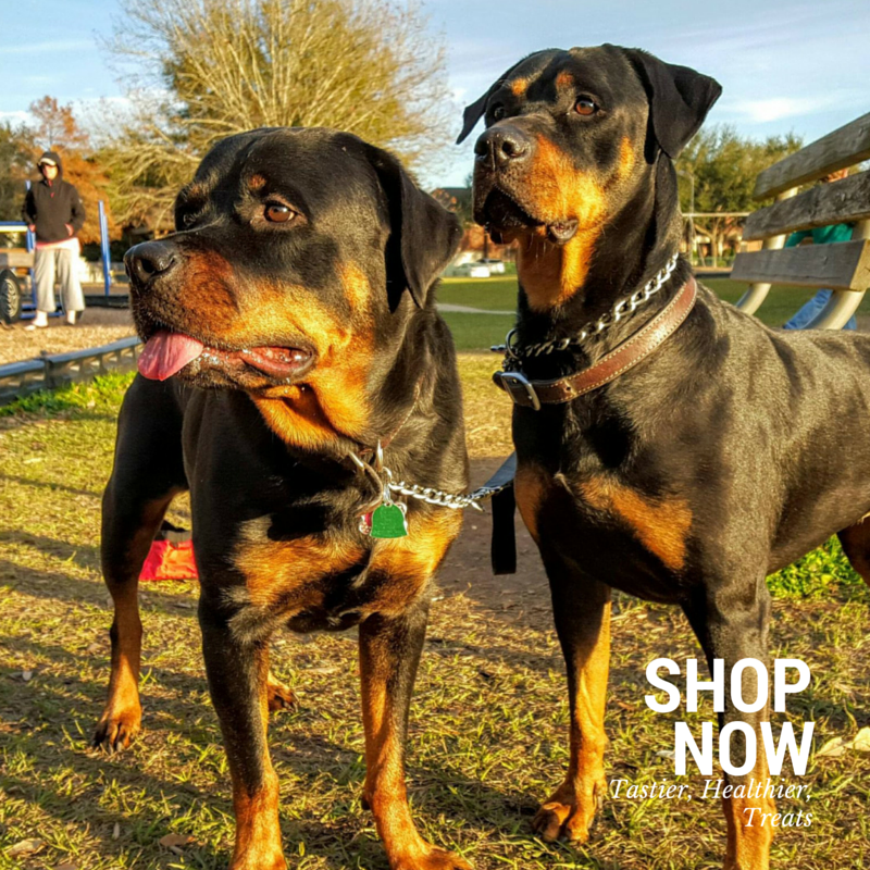 Dog Treats for Rottweilers