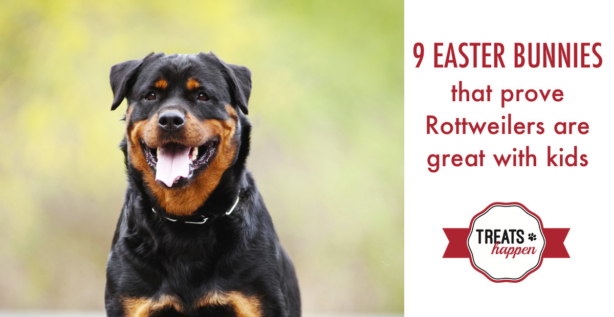 Why Rottweilers are good with kids Easter Blog Post Header