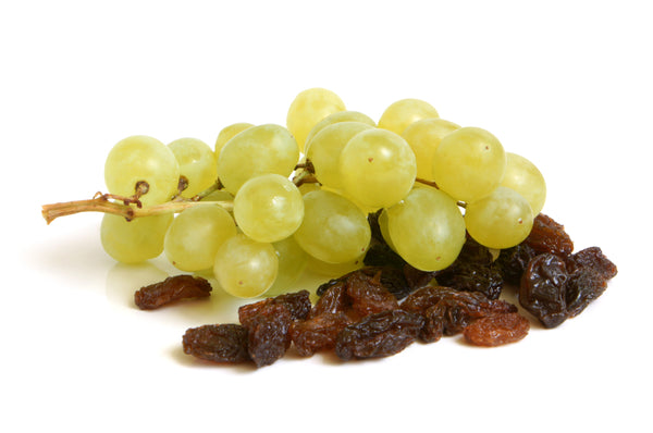 grapes and raisins are toxic to dogs