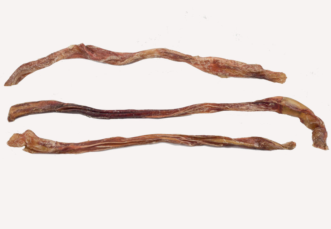 Footlong Bullystick Pizzle - Dehydrated Grain Free Beef Bully Stick