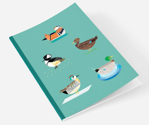 Dabbling Ducks A5 notebook with plain pages