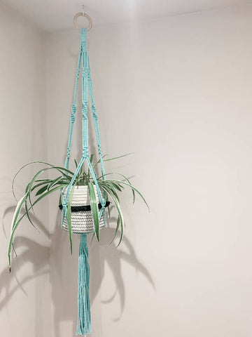 Medium Macrame Plant Hanger - Mint