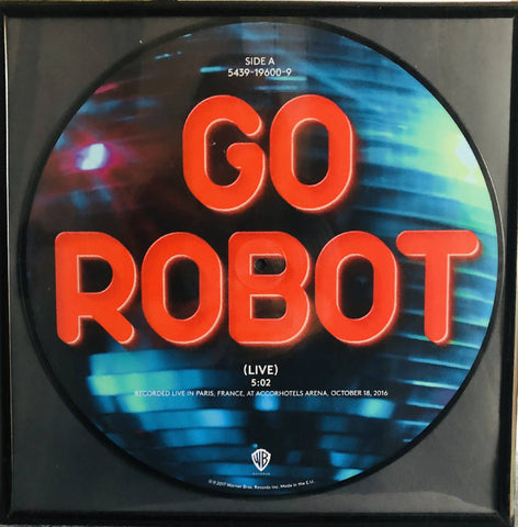 Framed record vinyl picture Disc 'Go Robot' - Red Hot Chili Peppers wall hanging