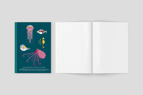 Sea Creatures A5 notebook with plain pages