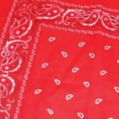RED PAISLEY BAND AND HEAD SCARF | PRETTY DISTURBIA