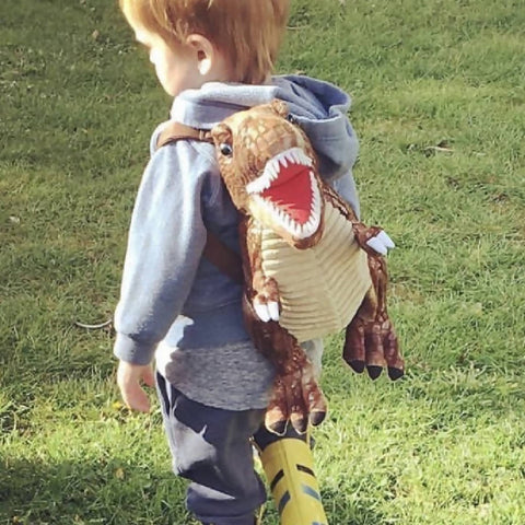 Brown Dinosaur Backpack