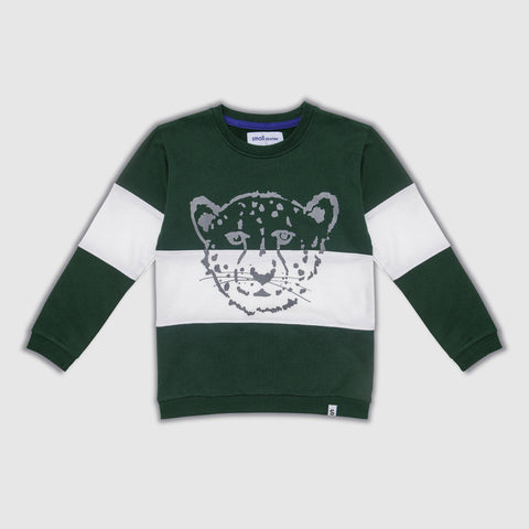 Cheetah green and white block sweater