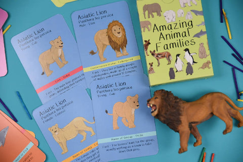 Amazing Animal Families Card Game