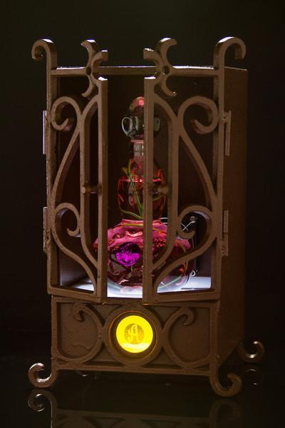 AsomBroso Tequila Lighted Cage