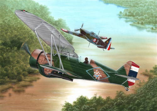 Special Hobby 1/72 Curtiss Model 68 Hawk III 'Over Siam and Argentina"