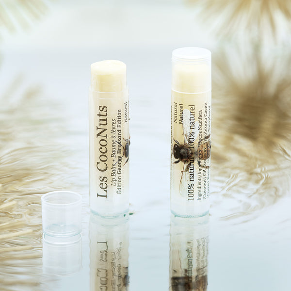baume a levres naturel georges brossard natural lip balm les coconuts