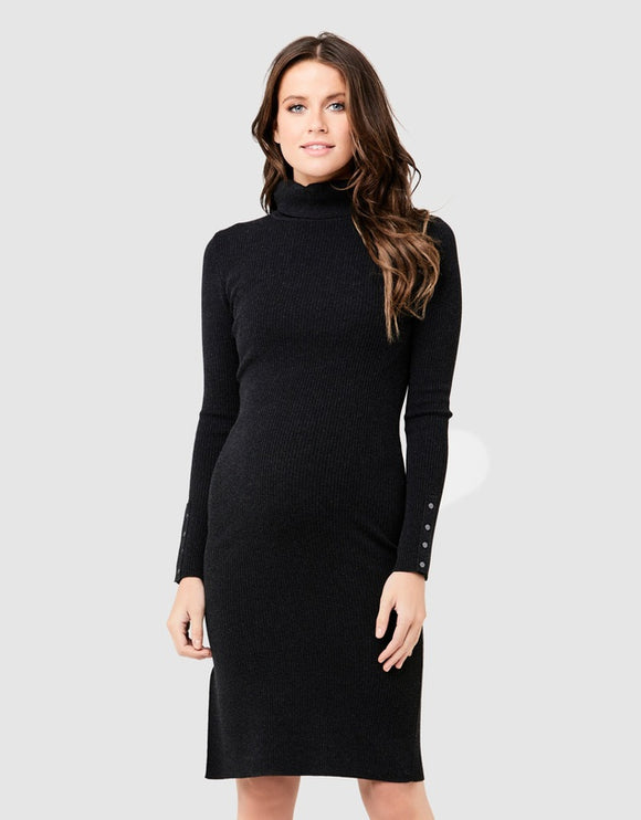 Dakota Roll Neck Rib Dress