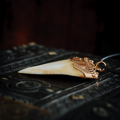 Antique Great White Shark Tooth Pendant