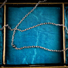 Antique French Silver Guard Chain