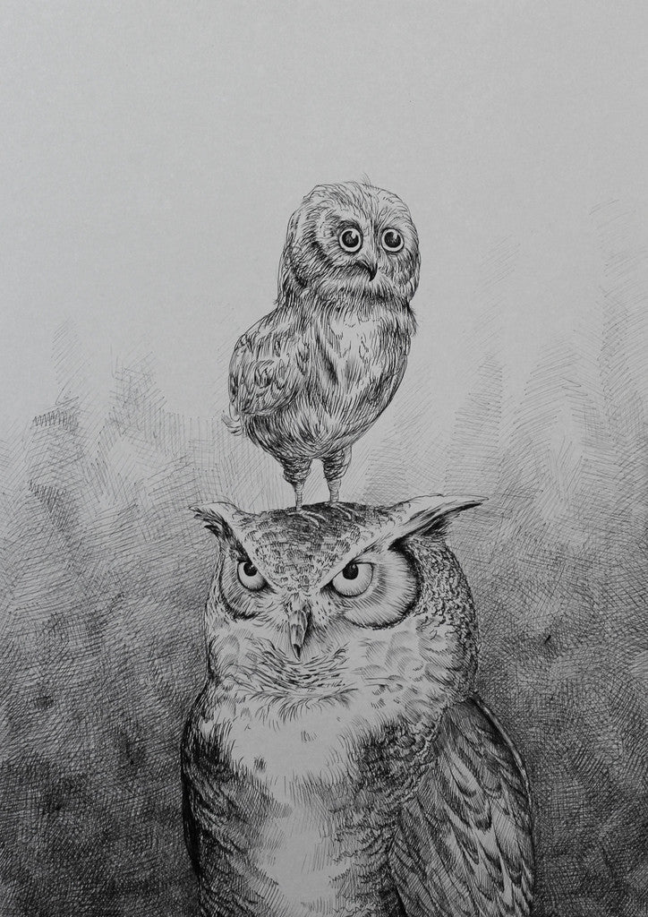 Father & Son Owls (A3)