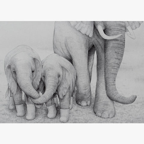 Elephant Siblings (50x70 cm)