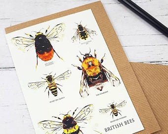 Illustrated Greeting Card - British Bees