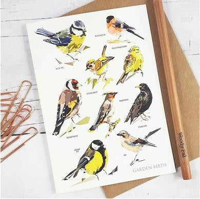 Illustrated Greeting Card - Garden Bird