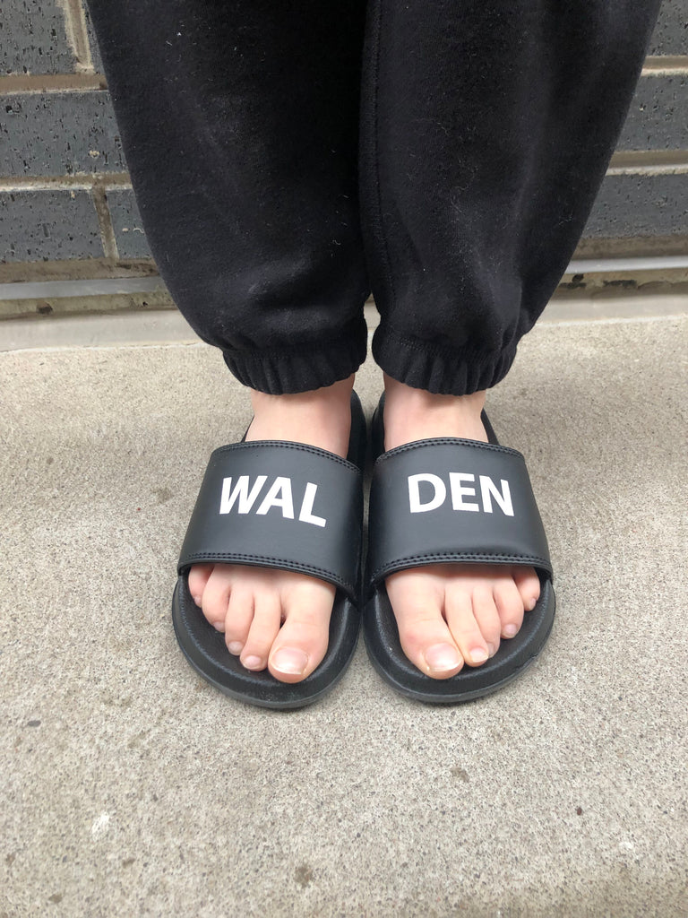 2019 Walden Slides