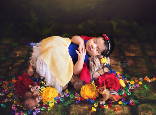 Snow Princess Dress • Snow White Inspired