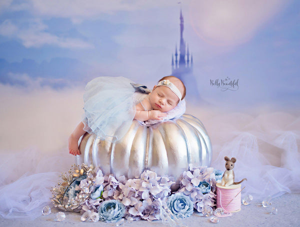 Ella Newborn Princess Dress • Cinderella Newborn Dress • Dream Baby • Princess Baby Dress • Sitter Princess Dress • Princess Newborn Gown • by Sew Trendy