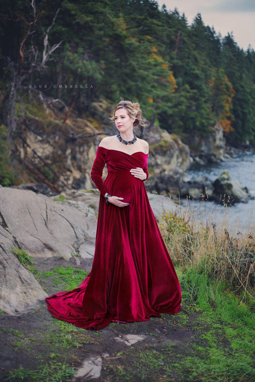 Bree Gown in Velvet
