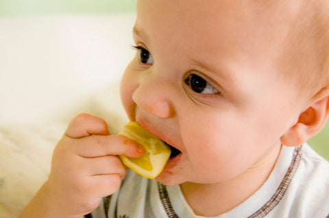 baby eating a lemon