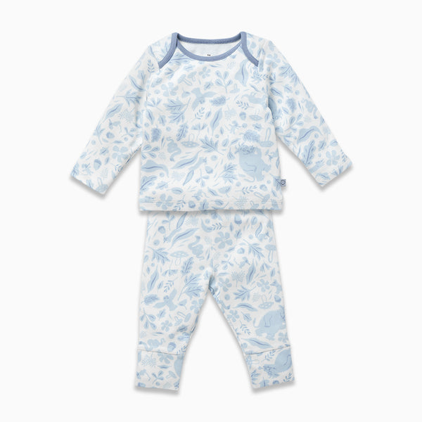 Gruffalo Dragonfly Blue Pyjamas Set