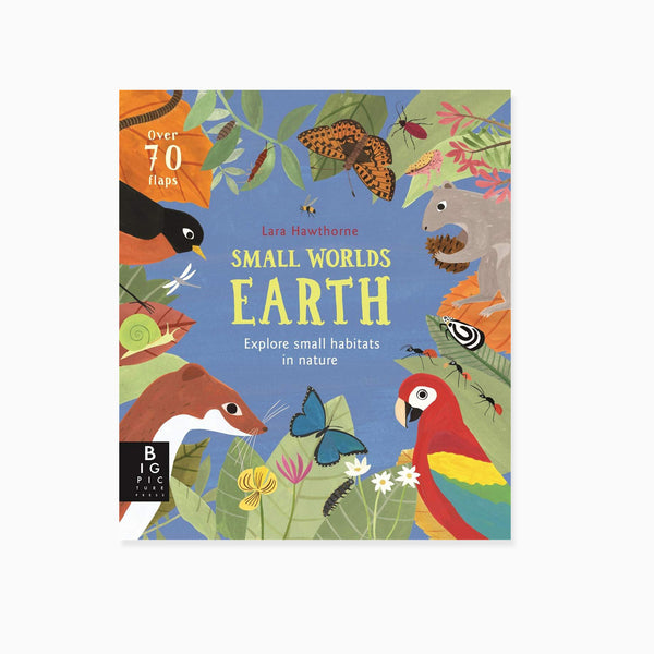 Small Worlds: Earth Book